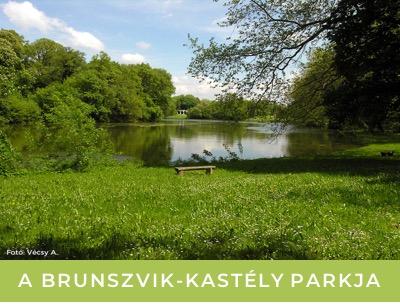 BrunszvikKastelyPark_th