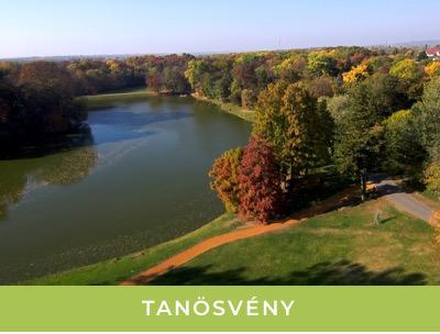 Tanosveny_th