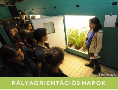 palyaorientaciosNapok_th